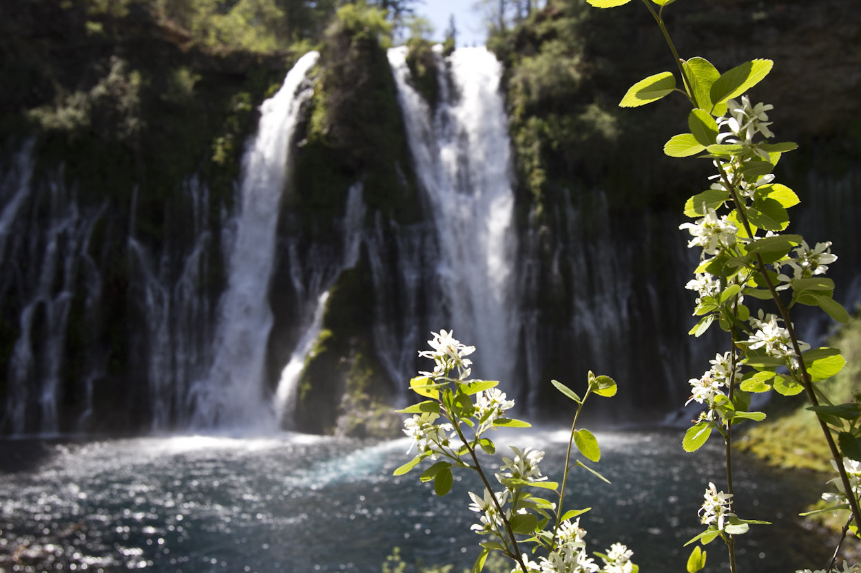 Burney Falls. Photo by Clay Duda.