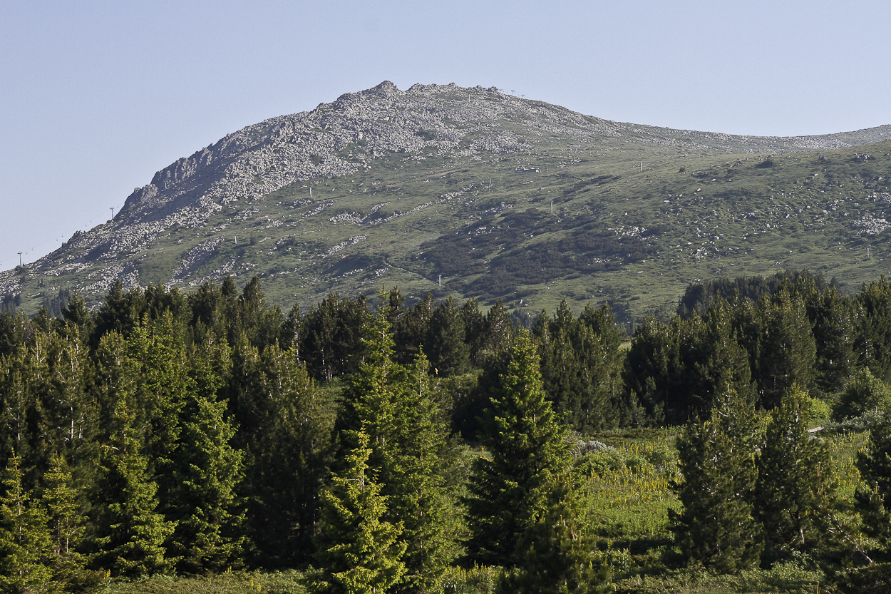 Vitosha Mountain in Bulgaria. Photo by Clay Duda.