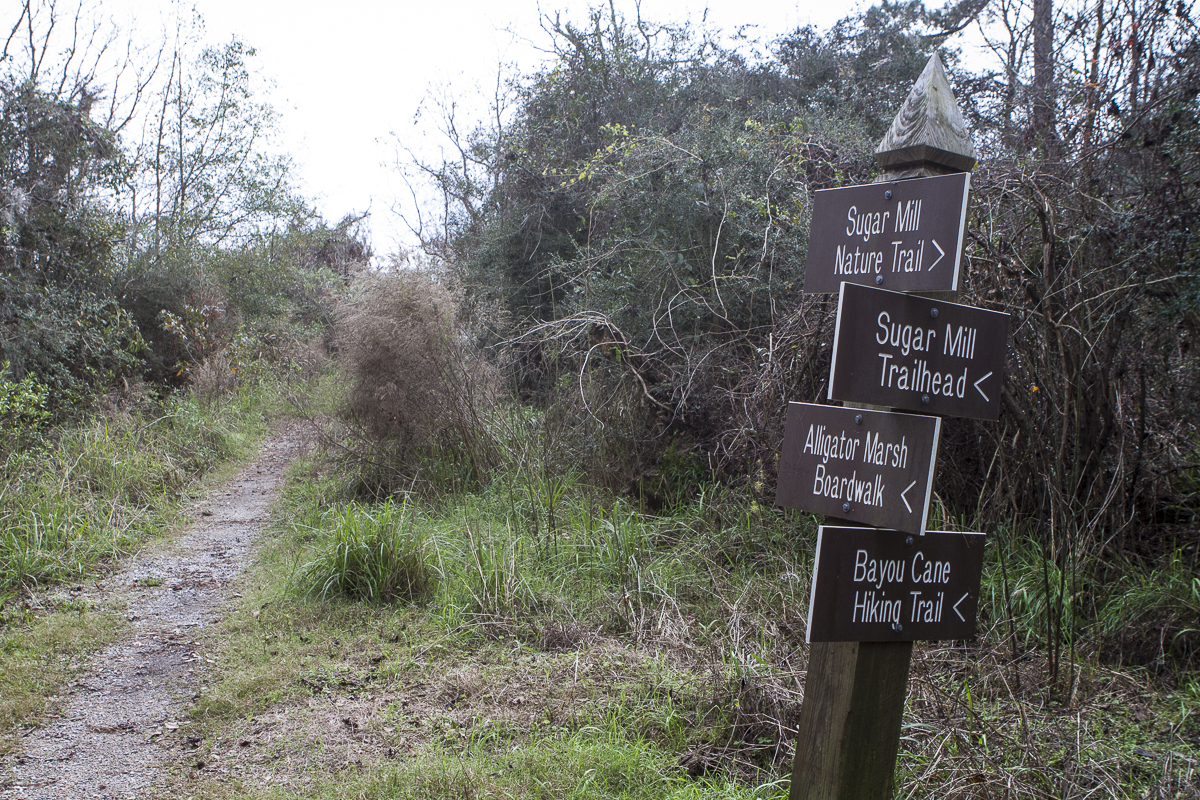 A trail marker at Fontainebleau State Park in Louisiana. Photo by Clay Duda.