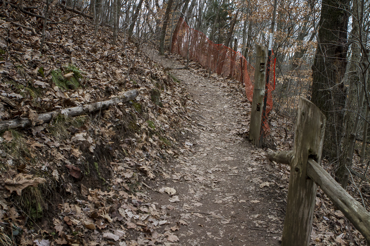 Orange plastic fencing lines a trail up House Mountain in an attempt to deter cut-throughs and prevent erosion. Photo by Clay Duda.