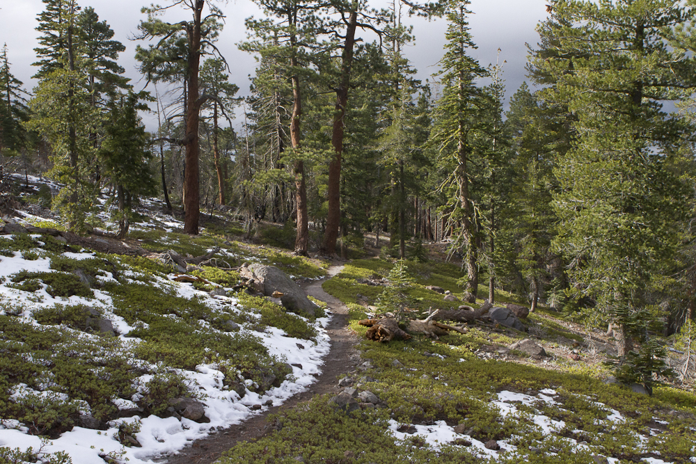 The path to Chaos Crags. Trail report. Lassen Volcanic National Park. Northern California winter hikes.