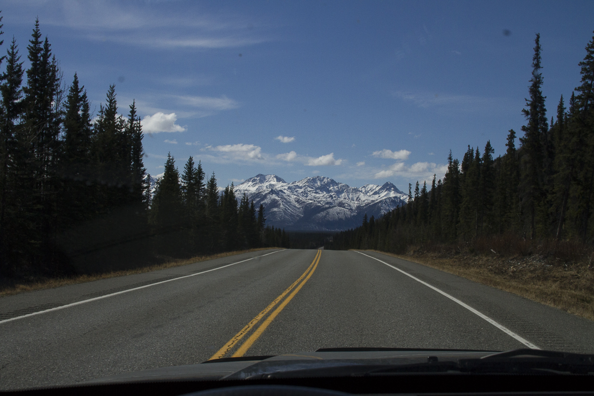 On the road to Homer, Alaska.