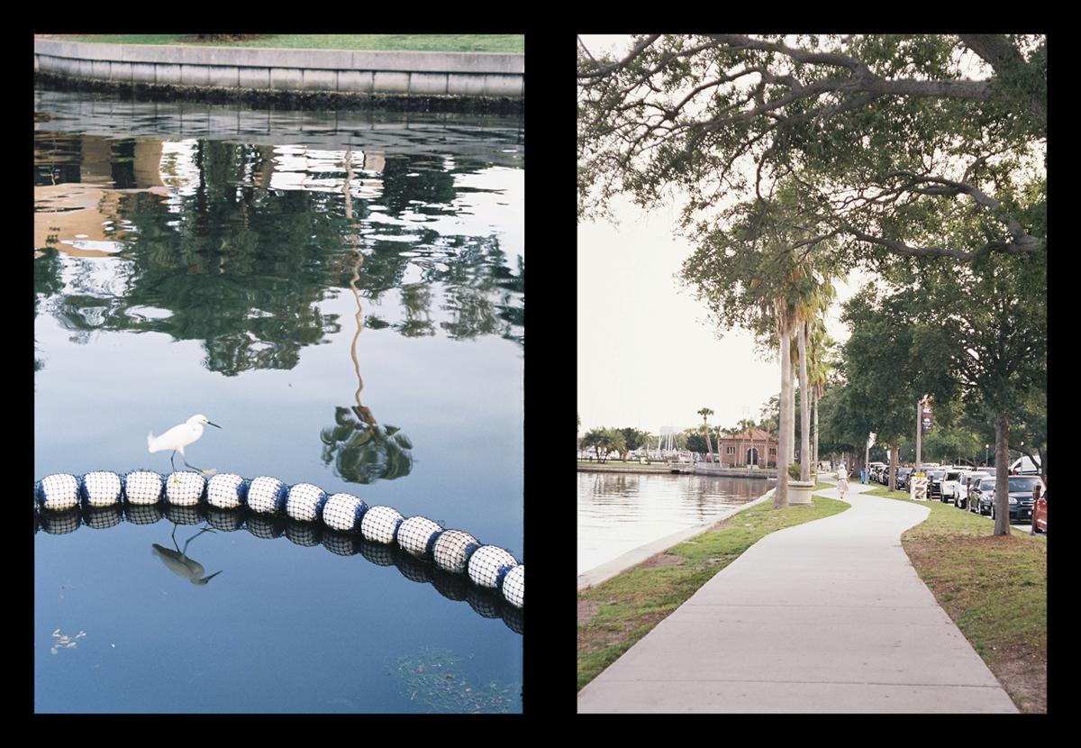 Parks near St. Pete marina.