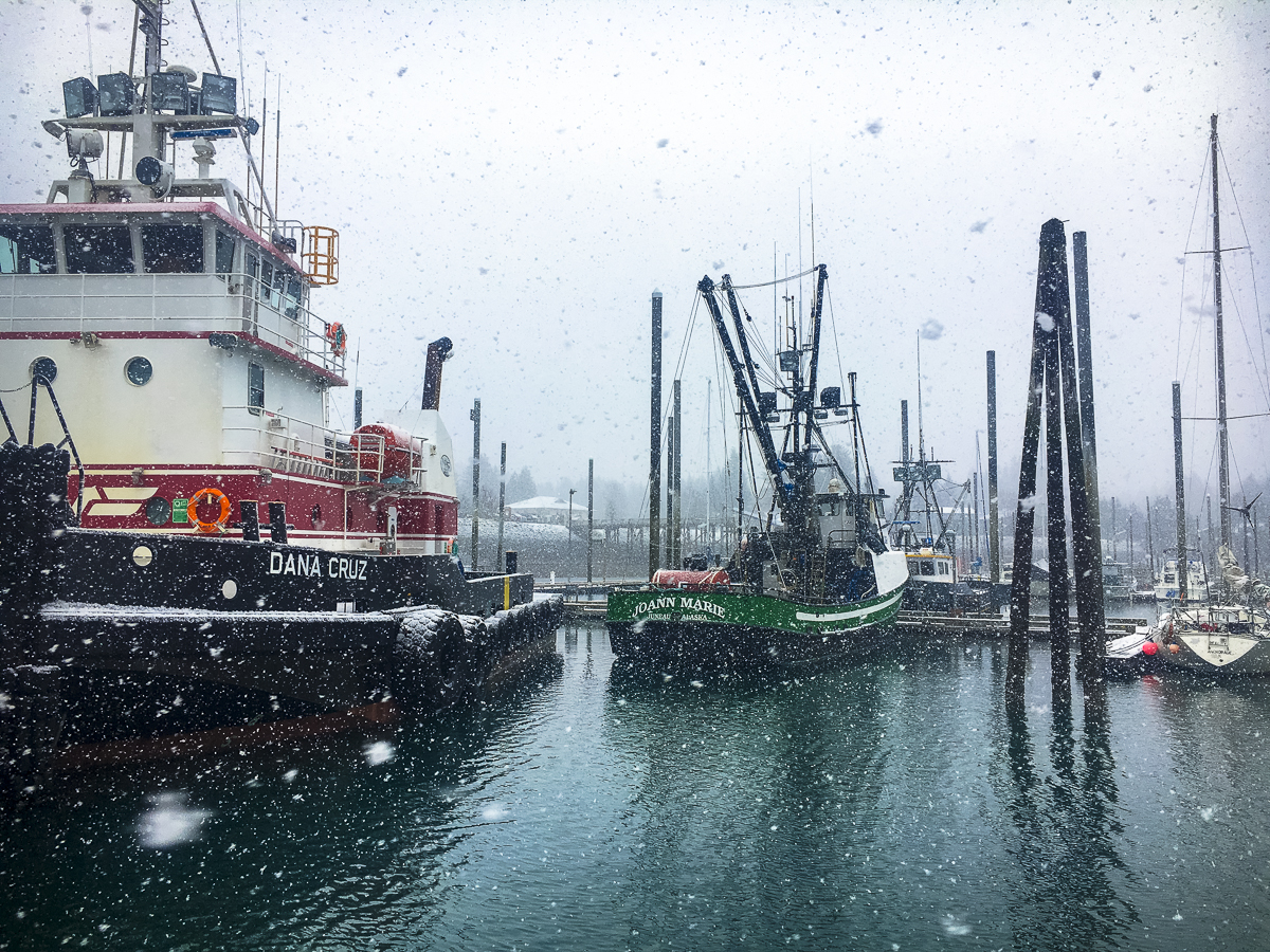 A snowy morning in Seldovia Harbor, Alaska.